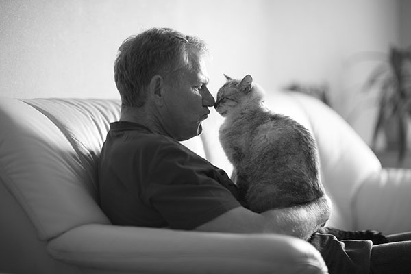 Seniors May Benefit from Adopting a Cat